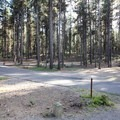 The orange loop.- Crane Prairie Campground