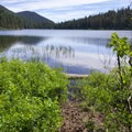 Access to the lake from one of the campsites.- Elk Lake, Bull of the Woods Wilderness