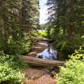 The creek that feeds the lake.- Elk Lake, Bull of the Woods Wilderness