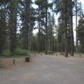 Site 10, the other group site.- Rock Creek Campground