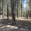 The toilet facility at Wyeth Campground.- Wyeth Campground, Deschutes River