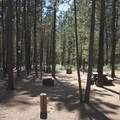 Typical site.- Wyeth Campground, Deschutes River