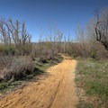 Dirt trails cross the park with views of the Sierras lying to the west.- Oxbow Nature Study Area
