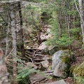 Rocky trail leading up to Bondcliff.- The Pemigewasset Loop