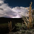 Overlooking a passing lightning storm from the forest.- Discovery Trail