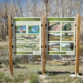 Interpretive signs placed sporadically offer information about restoration efforts as well as area flora and fauna.- McCarran Ranch Preserve River Trail