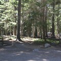 Typical campsite.- Cultus Lake Campground