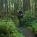 A hiker takes in the views along the trail toward Royal Basin.- Royal Basin Falls