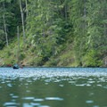 A kayaker paddles toward the far end of the lake.- Lake Kokanee to Kokanee Falls