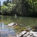 The Row River is quite tranquil above the falls.- Wildwood Falls Swimming Hole
