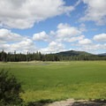 The view from the entrance to Sheep Bridge Campground offers beautiful views of the verdant Deschutes River Arm of Wickiup Reservoir and the surrounding wetlands.- Sheep Bridge Campground