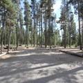 - Sheep Bridge Campground
