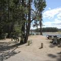Day use picnicking areas.- Sheep Bridge Campground