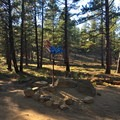 An enigmatic chicken trail feature.- Phil's Trail Complex: Ben's Trail to Phil's Trail Loop