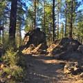 Optional boulder crack near the end of Phil's Trail.- Phil's Trail Complex: Ben's Trail to Phil's Trail Loop