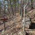 Several signed junctions along the route.- Blood Mountain, Freeman Trail Loop