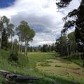 Marsh along the trail.- Sepulcher Mountain