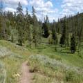 Sportsman Lake Trail.- Sepulcher Mountain