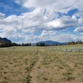 Meadow at the base of Clagett Butte.- Sepulcher Mountain