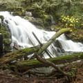 There are multiple cascading waterfalls along the trail.- Cabin Fever + Millipede Mountain Bike Trails