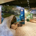 The visitor center contains exhibits, a film on the history of the refuge, and helpful rangers.- Ash Meadows National Wildlife Refuge
