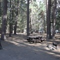 One of the smaller campsites. One of the vault toilets is in the background.- Gull Point Campground