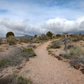 The trail is generally flat, walking along the tops of the rock formations visible from the lower portion of the park.- Eagle Point Trail