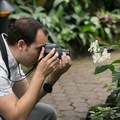 Orchids are an easier photographic target than moving birds.- Bloedel Conservatory