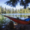 Campsites along the water's edge, lined with trees, offer ideal locations to set up hammocks.- Soda Peaks Lake