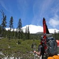 Going up. Mount Shasta (14,179 ft) from Bunny Flat (6,950 ft). - Mount Shasta: West Face Route