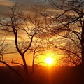 Get an early start in the winter and you can watch the sunrise from near the trailhead.- Springer Mountain Loop via Three Forks