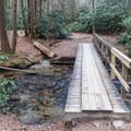 Many bridges to make the stream crosses a breeze.- Springer Mountain Loop via Three Forks