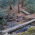 The bridges get smaller and trickier as you get further along the trail.- Springer Mountain Loop via Three Forks