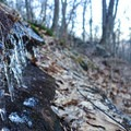 It gets cold in the winter months.- Springer Mountain Loop via Three Forks