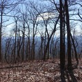 The winter allows views when normally there would be only tree cover.- Springer Mountain Loop via Three Forks