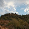 Cacti and small brush along the switchbacks.- Quartz Ridge Trail, Phoenix Mountain Preserve