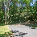 Typical campsite at Wawawai County Park Campground.- Wawawai County Park Campground