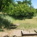 The small horseshoe pit at Wawawai County Park Campground.- Wawawai County Park Campground