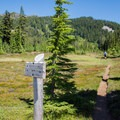 Trail to Russell Lake from the Pacific Crest Trail junction.- Jefferson Park via Whitewater Creek Trail