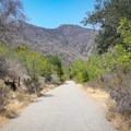 The trail climbs into the lower mountains.- Solstice Canyon