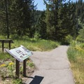 Interpretive signs give you a great idea of the local flora and fauna.- Upper Mesa Falls