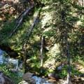 Blackmore Creek.- Mount Blackmore