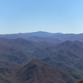 Great Smoky Mountains.- Gregory Bald + Shuckstack Fire Tower via Twentymile Loop
