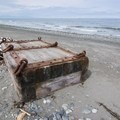 Some artifacts have washed ashore.- Joseph Whidbey State Park Beach