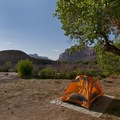 Camping at Buckhorn Wash.- Buckhorn Wash