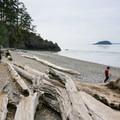 Driftwood lines the beach.- North Beach, Deception Pass State Park