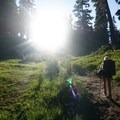 Sunsetting in the meadows on the hike to Blaca Lake.- Blanca Lake