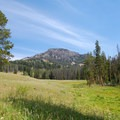 View of King Butte (9315 ft) from a large meadow en route to Big Horn Peak. - Big Horn Peak