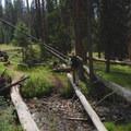 Creek crossing to the WF1 backcountry site.- Big Horn Peak