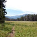 Meadow for tents at WF1.- Big Horn Peak